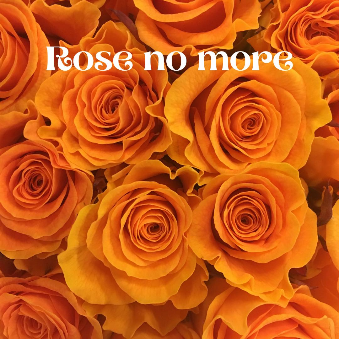 Rose no More